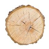 De grote die plak van de boomboomstam van het hout wordt gesneden Geweven oppervlakte met ringen en barsten Neutrale bruine die a stock afbeeldingen
