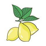 De grote gele citroen ligt op een blauwe plaat op een gele achtergrond Stock Afbeelding