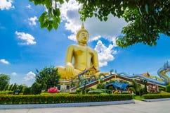 De grote gouden standbeelden van Boedha Stock Fotografie