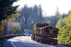 De grote installatie semi vrachtwagen met bos van opent buigende weg het programma stock afbeeldingen