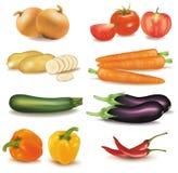 De grote kleurrijke groep groenten. Stock Afbeeldingen