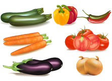 De grote kleurrijke groep rijpe groenten. Stock Fotografie