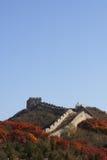 De grote Muur in China Stock Foto