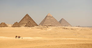 De Grote piramide met kameel stock foto