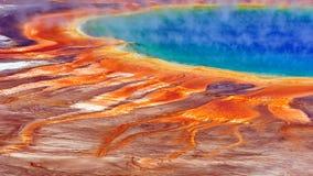 De grote Prismatische Lente Stock Fotografie