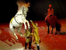 De Grote Reis 2009 van Apassionata in Florence Royalty-vrije Stock Afbeeldingen