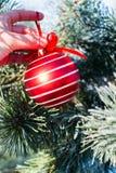 De grote rode bal die van Kerstmisdecoratie in hand openlucht houden Stock Afbeeldingen