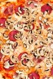 De grote salami, de paddestoelen en plantaardig-ISO van de Pizza van de Partij Royalty-vrije Stock Afbeelding