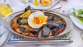 De grote schotel met de heerlijke oesters en de kammosselen op ijs met kalk wordt gediend met champagne en kruiden serving Royalty-vrije Stock Afbeelding