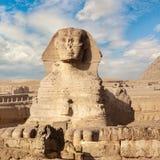 De Grote Sfinx in Giza stock foto