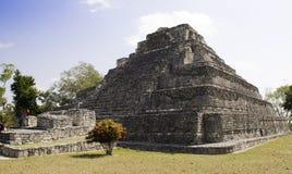 De grote Tempel, Mayan ruïneert dichtbij Costa Maya Mexico royalty-vrije stock afbeelding
