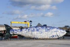 De Grote Vissen of de Zalm van Kennis, een beroemd beeldhouwwerk in Belfast stock afbeelding