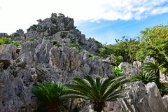 De grote vormingen van de kalksteenrots in Daisekirinzan-park in Okinawa Stock Fotografie