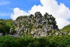 De grote vormingen van de kalksteenrots in Daisekirinzan-park in Okinawa Stock Foto