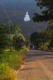 De grote witte kleur van Boedha, bij Wat Thep Phitak Punnaram-tempel royalty-vrije stock afbeelding