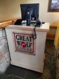 De grote wolf brengt onder stock afbeelding