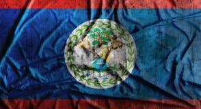 De Grunge verfrommelde vlag van Belize het 3d teruggeven Royalty-vrije Stock Fotografie