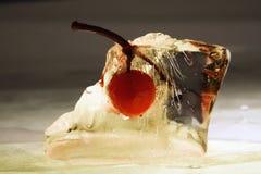 De guelder-rozen van de bes Royalty-vrije Stock Afbeeldingen