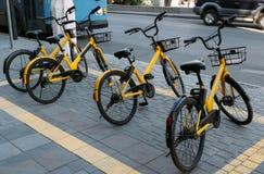 De gula cyklarna för hyra royaltyfria foton