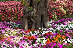 De härliga blommorna Royaltyfri Bild