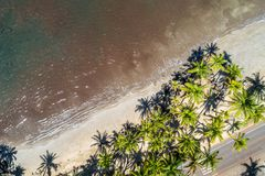 De härliga kusterna av Maui Hawaii Royaltyfri Foto