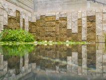 De härliga näckrornas i den Getty villan arkivbilder