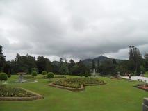 De härliga trädgårdarna av Powerscourt, Irland royaltyfri bild
