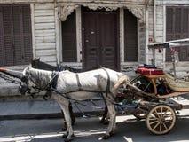 De häst drog phaetonsna, prinsö av Buyukada, Turkiet Arkivfoto