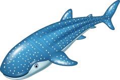 De haai van de beeldverhaalwalvis op witte achtergrond Stock Afbeelding