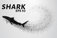 De haai van het deeltje Het silhouet van de haai is van kleine cirkels Vector illustratie Royalty-vrije Stock Afbeeldingen