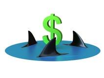 De Haaien van het geld Stock Fotografie