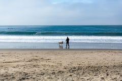 De haal van mensenspelen met zijn hond bij het strand royalty-vrije stock afbeeldingen