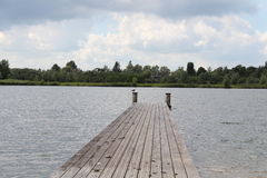 Zeemeeuw op de Pijler stock foto