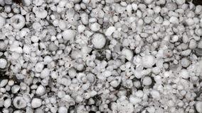 De hagelstenen ter plaatse na hagelbui, hagel van grote grootte, begroeten met maat met een groter muntstuk royalty-vrije stock afbeeldingen