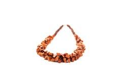De halsband van vrouwen Stock Afbeelding