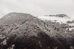 De halve sneeuw van het berglandschap en grijze hemel royalty-vrije stock afbeelding