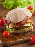 De Hamburger van de kip Stock Afbeelding