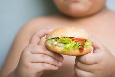 De Hamburger van de kippenkaas op zwaarlijvige vette jongenshand Royalty-vrije Stock Fotografie