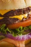 De Hamburger van de rundvleeskaas met Slatomaat Stock Foto