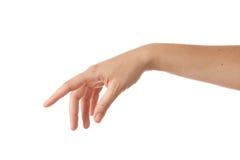 De hand stock afbeelding