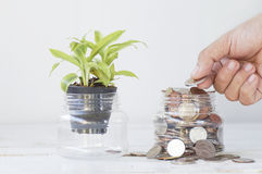 de hand bracht geld op fles muntstuk, concept sparen en de groei aan binnen royalty-vrije stock afbeelding