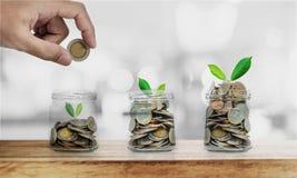 De hand die muntstuk in glasflessen zetten met installaties gloeien, die geld, investering besparen en bezuinigt concept stock fotografie