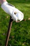 De hand die van de golfspeler een golfbal houdt Royalty-vrije Stock Foto's