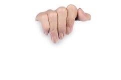 De hand die van de vrouw wit leeg document houdt Royalty-vrije Stock Foto's