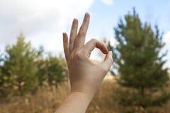 De hand die van de vrouw teken maken op aardachtergrond O.k. stock fotografie