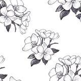De hand getrokken bloemen van de patroon naadloze appel op witte achtergrond royalty-vrije illustratie
