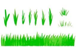 De hand getrokken die reeks van het waterverfgras op witte achtergrond wordt geïsoleerd Schetsgras Het lichtgroene patroon van he royalty-vrije illustratie