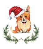 De hand getrokken illustratie van de beeldverhaalwaterverf van corgihond in de hoed van de Kerstman stock illustratie