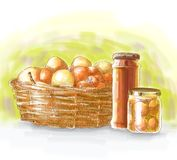 De hand Getrokken Ingrediënten van het Voedsel Royalty-vrije Stock Foto
