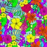 De hand getrokken kleurrijke en in tropische Hawaiiaanse vector van het bloemen naadloze patroon Stock Afbeelding